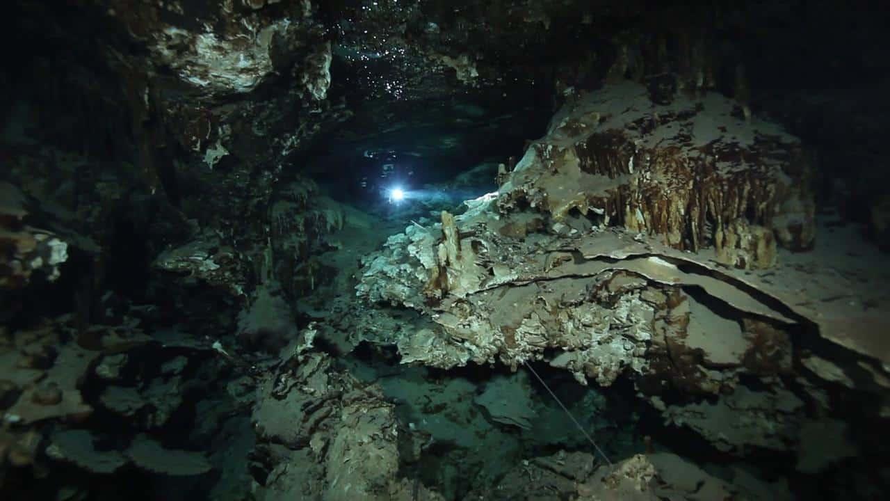 cave diving riviera maya (11)