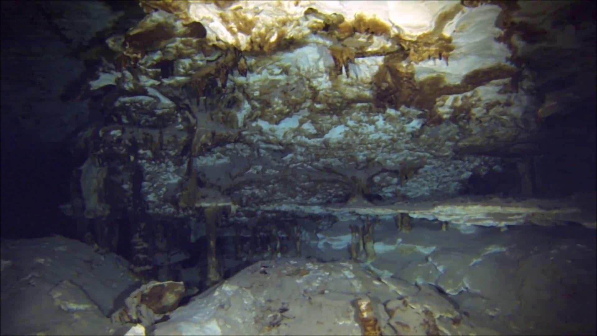 cave diving riviera maya (20)