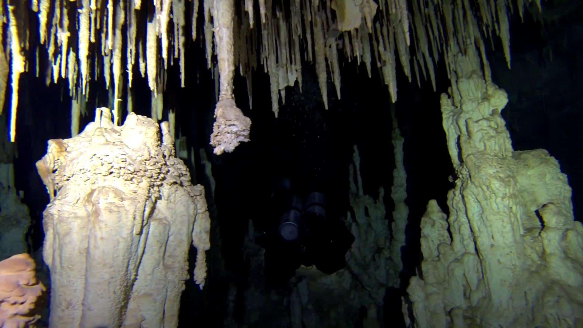 cave diving riviera maya (23)