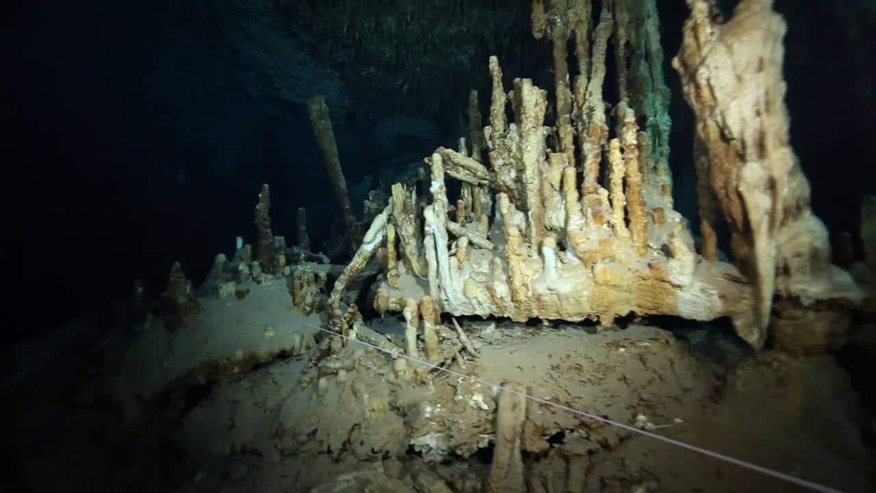 cave diving riviera maya (9)
